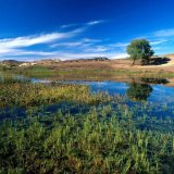 Parishan Lake Recovery