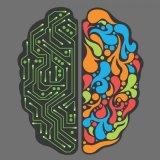 Researchers Create Memory Mimicking Brain
