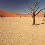 Slowing Climate Change Makes Economic Sense