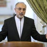 Salehi: Nuclear Program Strong