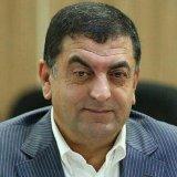 Official: Iran Lags in Qatari Market
