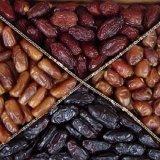 Hormozgan Date Exports Earn $14.5m