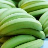 Bananas Exported to Turkmenistan, Turkey, Qatar