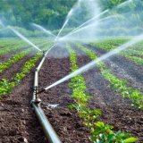 Modernization of Irrigation Systems in  Full Swing