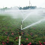 Expansion of Modern Irrigation Systems