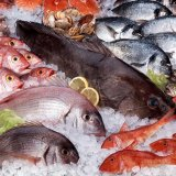 Seafood Exports to Reach $400m