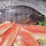 20% Rise in Tilapia Imports