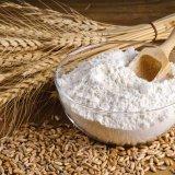 Iran to Send More Flour to Iraq via Russia Wheat Deal