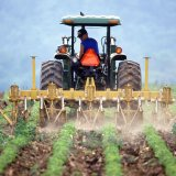 Agriculture Entitled to 10% of NDFI Earnings