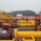China's Gas Production Falls Behind Demand