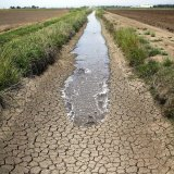 Plans call for upgrading dilapidated irrigation systems in an agriculture sector that is responsible for more than 90% of Iran's annual water consumption.