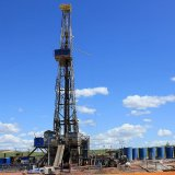 14 Oil, Gas Fields  Discovered in 4 Years