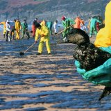 Gulf of Mexico Oil Spill May Be Largest Since BP Disaster