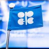 Oil Coalition Seeks Consensus Ahead of Algiers Summit