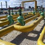 Boosting Gas Storage Capacity on Agenda