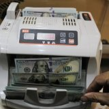 Forex Rates Rally Once Again