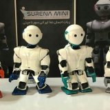 Iran Unveils New Mini Robot