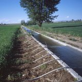 What has remained from the country's water resources should be tactfully monitored and controlled.