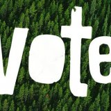 Voters Urged to Pick Eco-Friendly Candidates