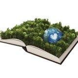 Environment School Course Needs Specialized Teachers