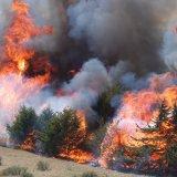 25 Hectares Burn in Gachsaran Wildfire