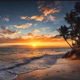 Hawaiian July Tourism Posts Robust Revenues