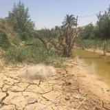 DOE's Khuzestan Water Approach Triggers Row