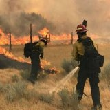 Efforts to Contain Largest US Wildfire Succeeding