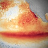 The El Nino weather pattern led to the emission of 3 billion tons of carbon.