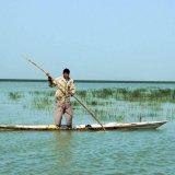 Boost to Shadegan Wetland Revival Efforts
