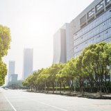 Trees Offer Services Worth $500m to Megacities