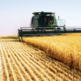 Agricultural production rose by 6.9% compared to H1 2017.