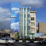 New Murals for City Walls