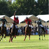 Chogan is an Iranian polo game and Kamancheh is a stringed musical instrument.