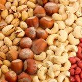 Iran a Major Exporter of Nuts