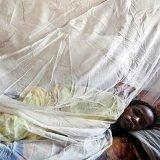 Mysterious Disease Kills 60 in Nigeria