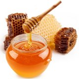 Honey Production Increases