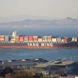 Yang Ming, the world's ninth largest container shipping line, is a comparatively small player in Iran, calling there just once a week.