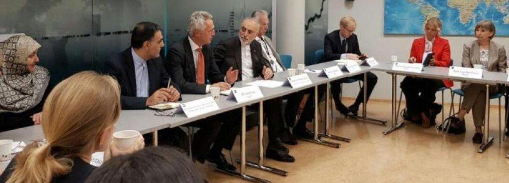 IAEO's Salehi Says Outlook on JCPOA Unambiguous