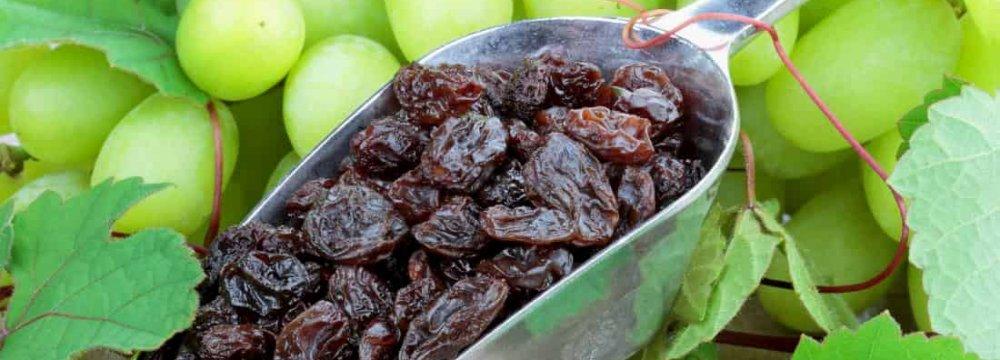 Raisins: Iran's 3rd Major Non-Oil Export Commodity