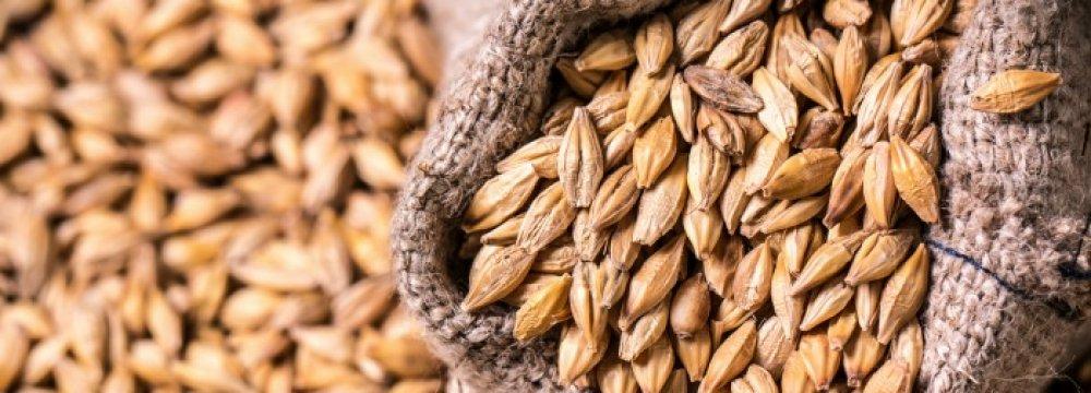 Barley Imports Top $79m