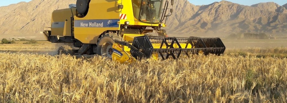 Foundation Slams Gov't Decision to Import 2.3m Tons of Wheat