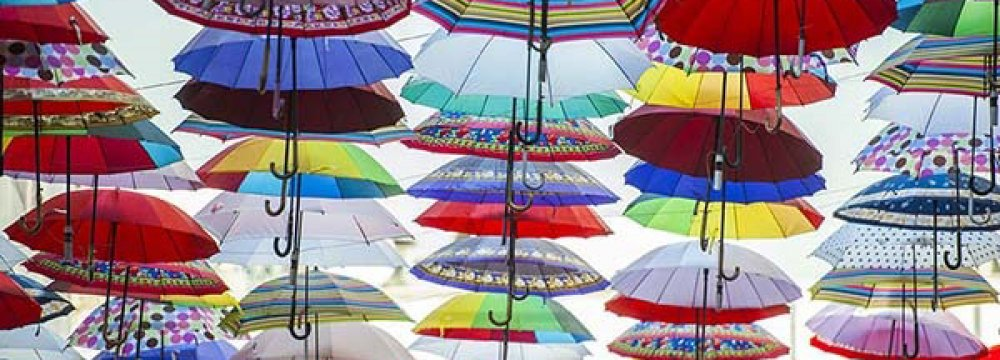 Umbrella Imports Top $1.5 Million