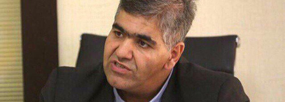 Iran Capital Market Diversity on Track - Interview