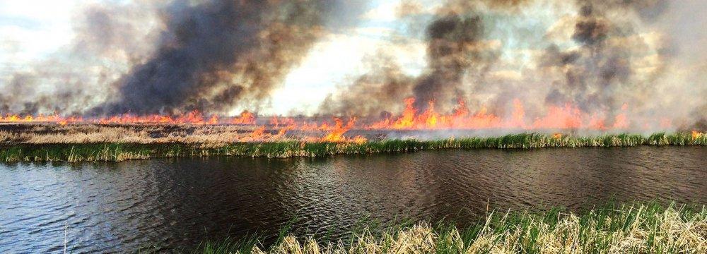 Iran to Help Extinguish Wetland Fire on Iraqi Soil