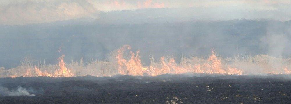 Smoke From Hour al-Azim Wildfire Choking Khuzestan
