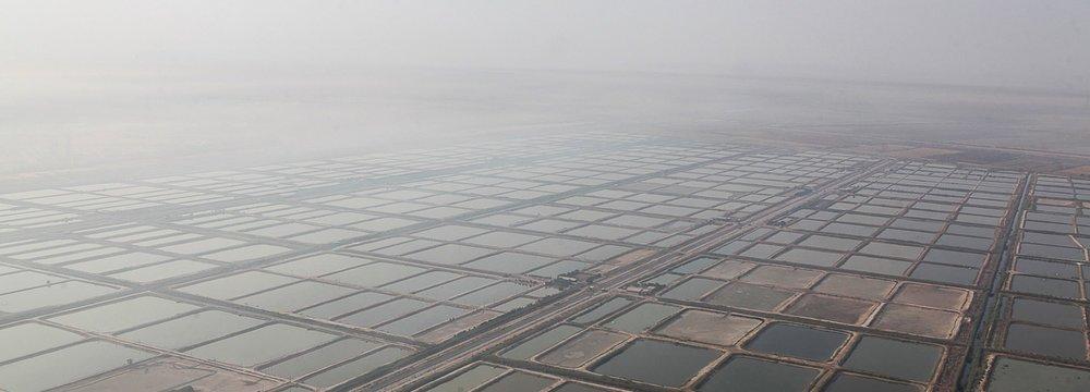 Khuzestan's Stifling Smoke  Draws Top Official to Province