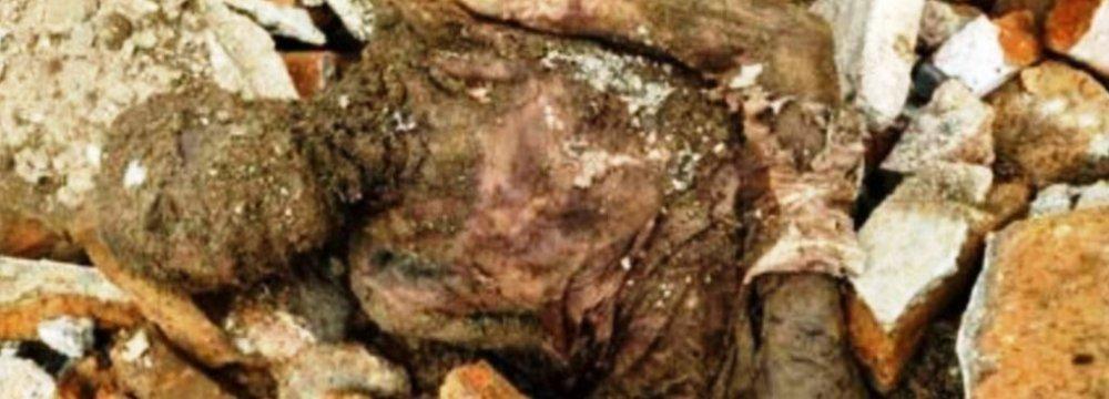 Tehran Mummy's Fate Unclear