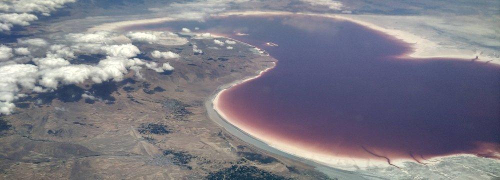 Southern Urmia Lake to Serve as Rare Animal Reserve