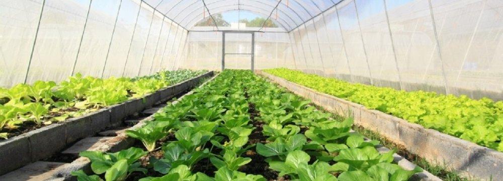 Agritech Plan to Upgrade Farming